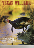 Managing for Turkeys by Mary O. Parker